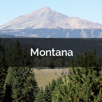 Montana Maps